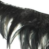 Galon plumes noir jais